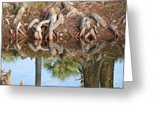 Rooted Reflections Greeting Card