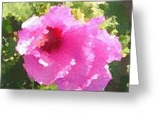 Rose Of Sharon In Abstract Greeting Card