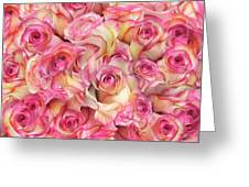 Roses Background Greeting Card