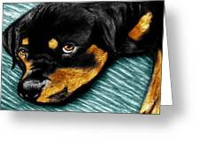 Rotty Greeting Card