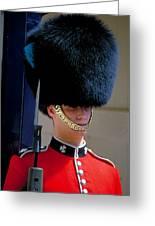 Royal Guard Greeting Card