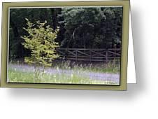 Rural Landscape Greeting Card