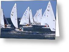 Sailboat Championship Racing Greeting Card