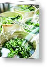 Salad Bar Buffet Fresh Mixed Lettuce Display Greeting Card