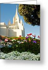 San Diego Flowers Greeting Card