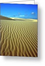 Sandy Desert Greeting Card by MotHaiBaPhoto Prints