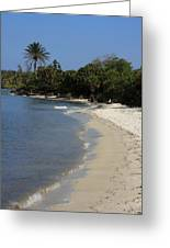 Sanibel Island Lagoon Greeting Card