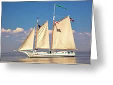 Schooner On Mobile Bay Greeting Card