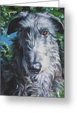 Scottish Deerhound Greeting Card