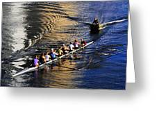 Sculling The Hillsborough Greeting Card