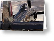 Sea Fury Reflections Greeting Card