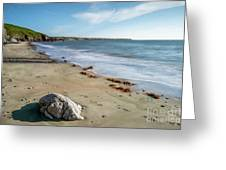 Seascape Wales Greeting Card