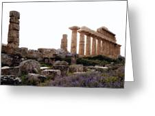 Selinunte - Sicily Greeting Card