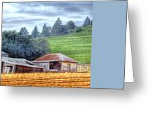 Shed And Grain Bins 17238 Greeting Card