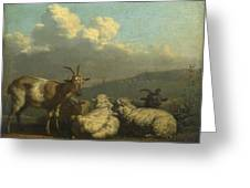 Sheep And Goats Greeting Card