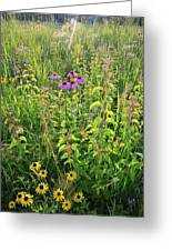 Shelley Kelly Prairie Wildflowers Greeting Card
