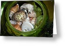 Shells Under Glass Greeting Card