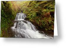 Shepperd's Dell Falls Greeting Card