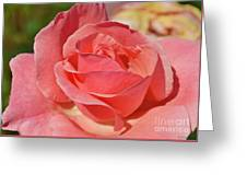 Shining For You Greeting Card