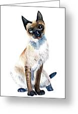 Siamese Cat Painting Greeting Card