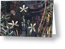 Sierra Wildflowers Greeting Card
