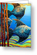 Sillyfish 3 Greeting Card by Barbara Stirrup
