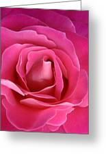 Silo Of Rose Greeting Card