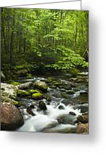 Smoky Mountain Stream Greeting Card by Andrew Soundarajan