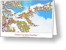 Snow-covered Conifer Greeting Card