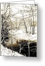 Snow-covered Stream Banks, Pennsylvania Greeting Card