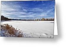 Snow Storm 2 Panorama  Greeting Card