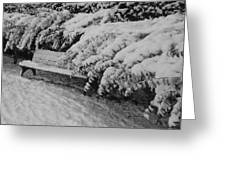 Snowtime Greeting Card