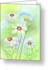 Softness Greeting Card