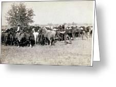 South Dakota: Cowboys Greeting Card