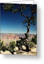 South Rim Greeting Card