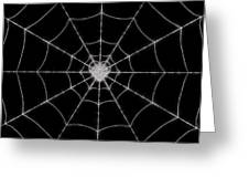 Spider No.2 Greeting Card