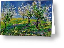 Spring 79 Greeting Card