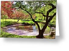 Spring At Tappan Park Pond Greeting Card