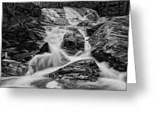 Spring Cascades #9 Greeting Card