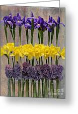 Spring Delights Greeting Card