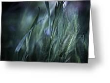 Spring Grass Emerging Greeting Card