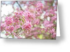 Spring Lightness Greeting Card