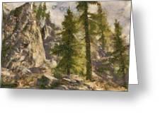 Spruce Greeting Card
