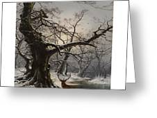 Stag In A Snow Covered Wooded Landscape Greeting Card