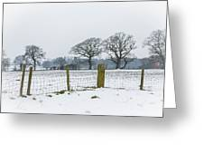Standing In The Snow Greeting Card