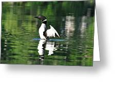 Standing Loon Greeting Card