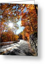 Stone Wall 1 Greeting Card