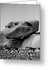 Stoneface Greeting Card