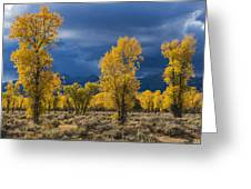 Storm Light Greeting Card by Joseph Rossbach
