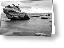 Stormy Bonsai Rock Greeting Card